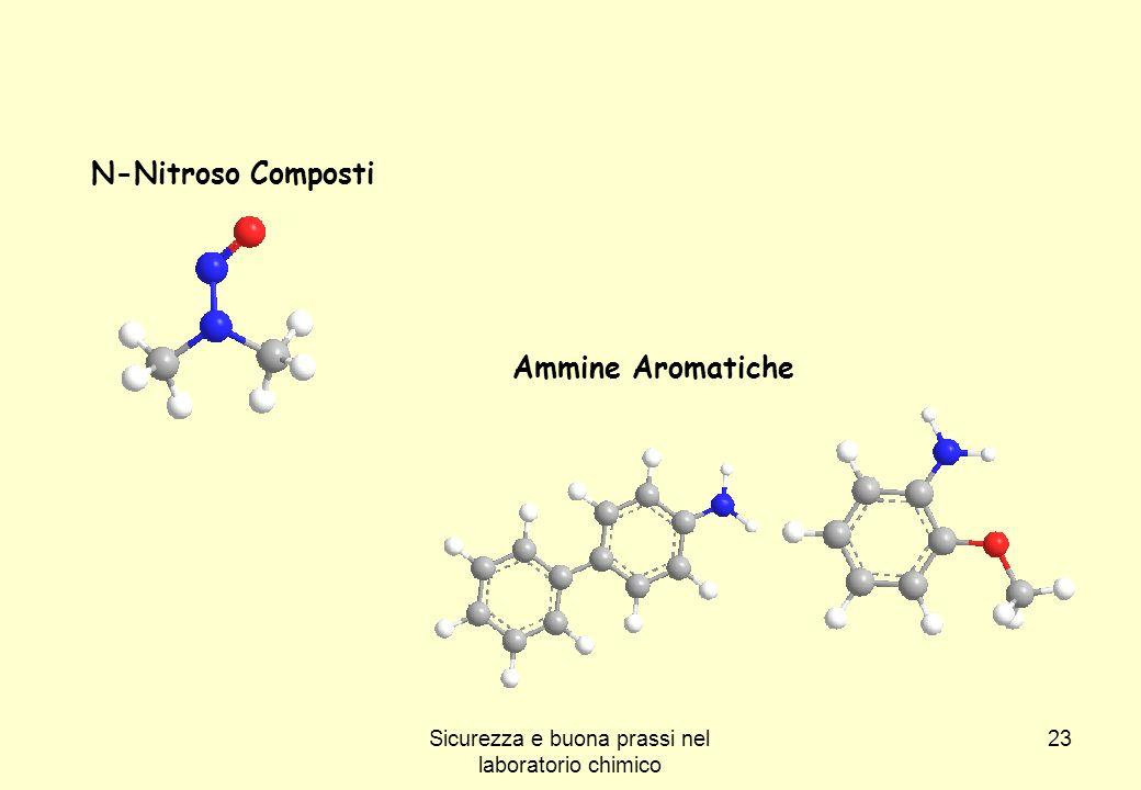 23 N-Nitroso Composti Ammine Aromatiche Sicurezza e buona prassi nel laboratorio chimico