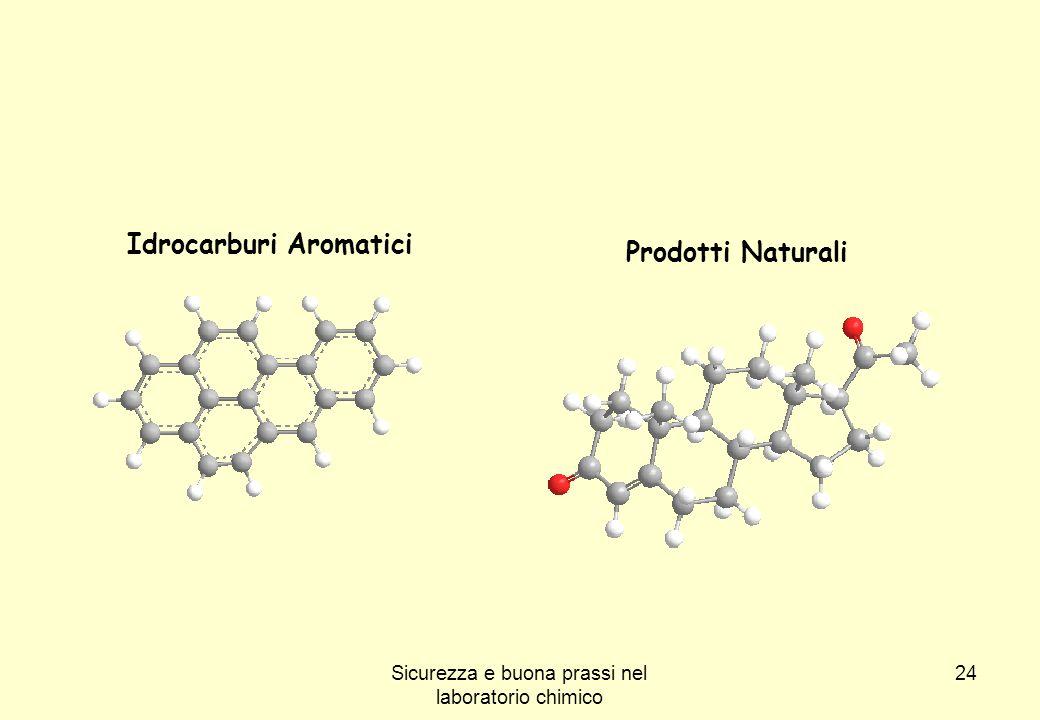 24 Idrocarburi Aromatici Prodotti Naturali Sicurezza e buona prassi nel laboratorio chimico