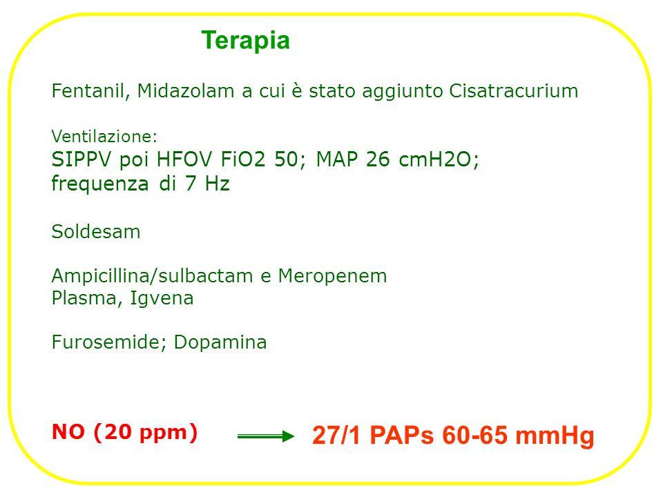 Terapia Soldesam Ampicillina/sulbactam e Meropenem Plasma, Igvena Furosemide; Dopamina NO (20 ppm) 27/1 PAPs 60-65 mmHg Ventilazione: SIPPV poi HFOV FiO2 50; MAP 26 cmH2O; frequenza di 7 Hz Fentanil, Midazolam a cui è stato aggiunto Cisatracurium