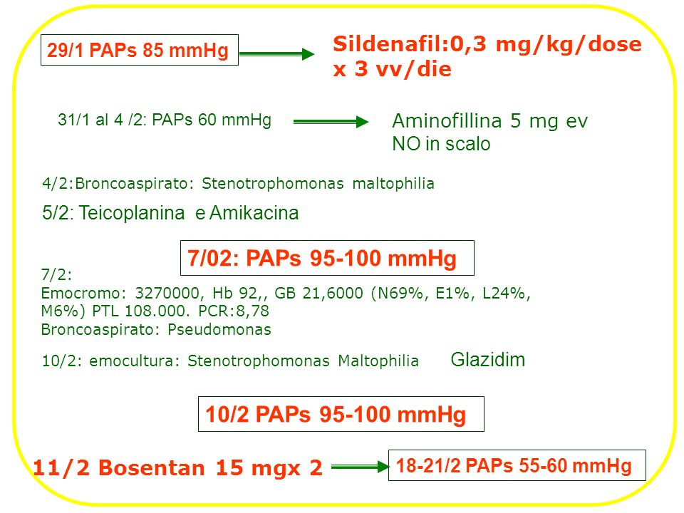 Sildenafil:0,3 mg/kg/dose x 3 vv/die Aminofillina 5 mg ev NO in scalo 11/2 Bosentan 15 mgx 2 29/1 PAPs 85 mmHg 31/1 al 4 /2: PAPs 60 mmHg 10/2 PAPs 95-100 mmHg 18-21/2 PAPs 55-60 mmHg 7/2: Emocromo: 3270000, Hb 92,, GB 21,6000 (N69%, E1%, L24%, M6%) PTL 108.000.