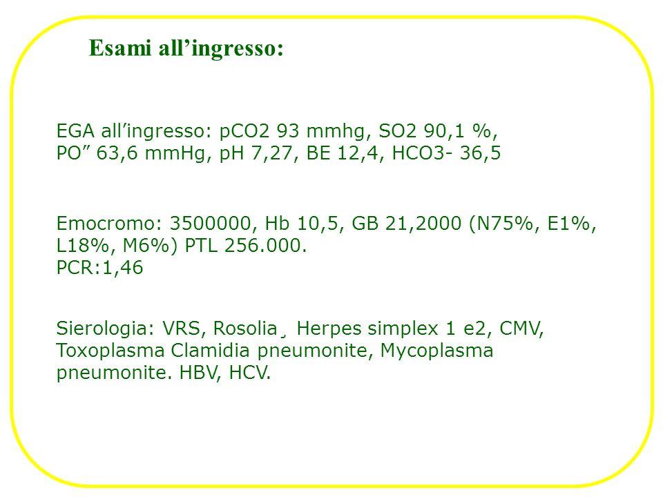 Esami allingresso: EGA allingresso: pCO2 93 mmhg, SO2 90,1 %, PO 63,6 mmHg, pH 7,27, BE 12,4, HCO3- 36,5 Emocromo: 3500000, Hb 10,5, GB 21,2000 (N75%,