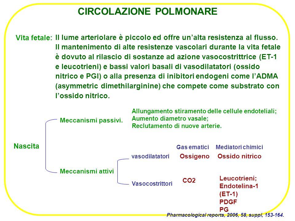 IPP: Terapia vasoattiva I più utilizzati sono: - nifedipina alla dose di 0,5-2 mg/kg in 3 somministrazioni - diltiazem.