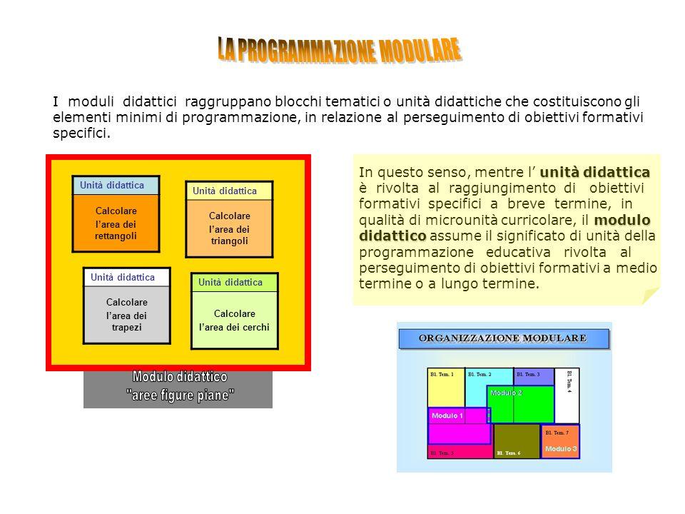 I moduli didattici raggruppano blocchi tematici o unità didattiche che costituiscono gli elementi minimi di programmazione, in relazione al perseguimento di obiettivi formativi specifici.