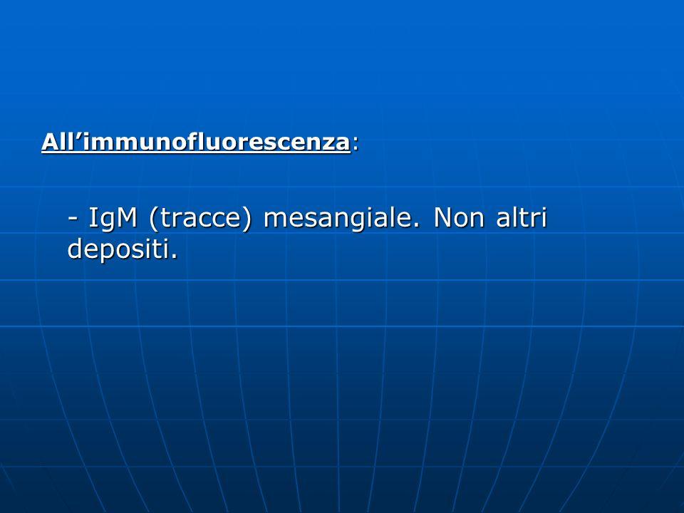 Allimmunofluorescenza: - IgM (tracce) mesangiale. Non altri depositi.