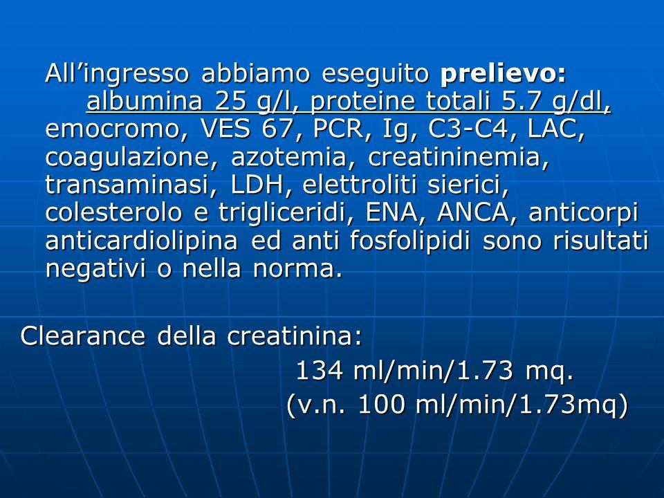 Allingresso abbiamo eseguito prelievo: albumina 25 g/l, proteine totali 5.7 g/dl, emocromo, VES 67, PCR, Ig, C3-C4, LAC, coagulazione, azotemia, creat