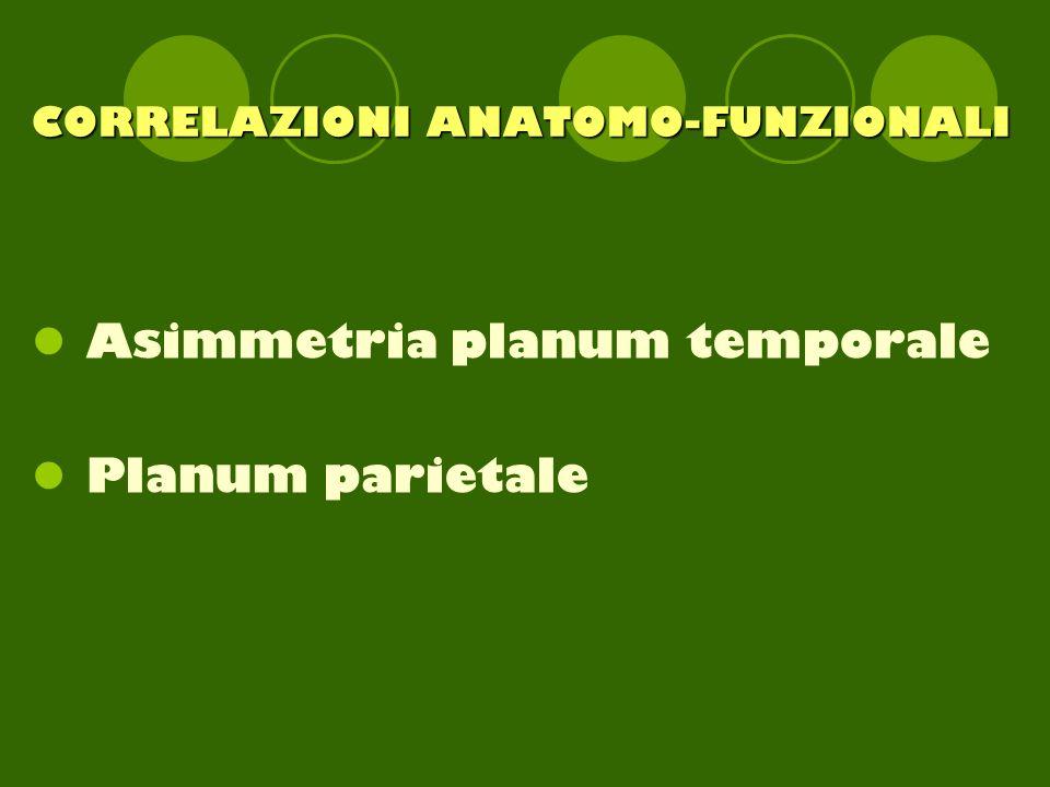 CORRELAZIONI ANATOMO-FUNZIONALI Asimmetria planum temporale Planum parietale