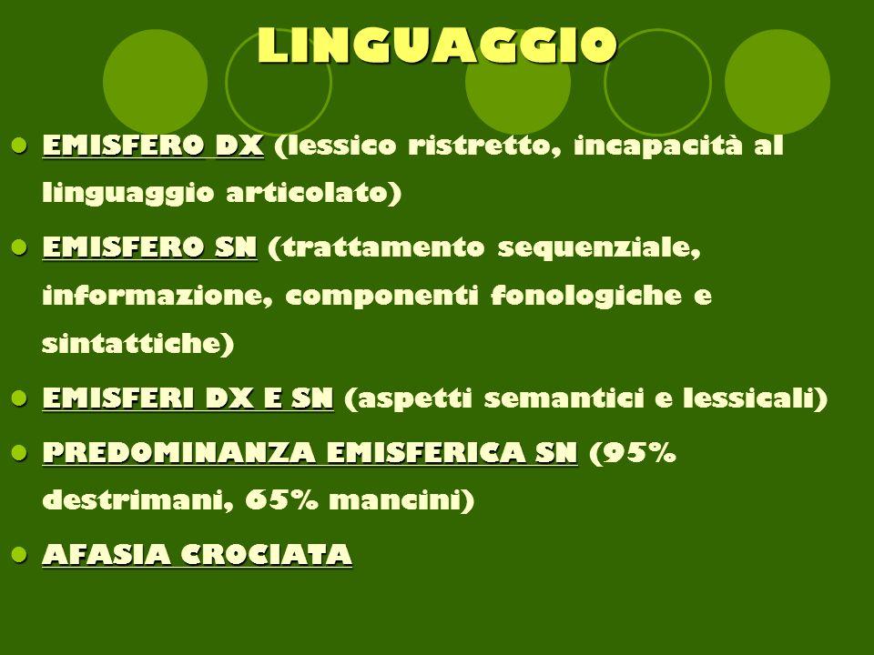 LINGUAGGIO EMISFERODX EMISFERO DX (lessico ristretto, incapacità al linguaggio articolato) EMISFERO SN EMISFERO SN (trattamento sequenziale, informazione, componenti fonologiche e sintattiche) EMISFERI DX E SN EMISFERI DX E SN (aspetti semantici e lessicali) PREDOMINANZA EMISFERICA SN PREDOMINANZA EMISFERICA SN (95% destrimani, 65% mancini) AFASIA CROCIATA AFASIA CROCIATA