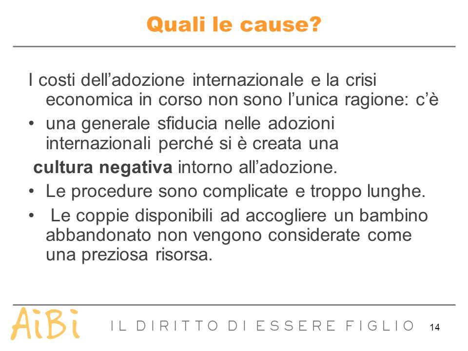 14 Quali le cause? I costi delladozione internazionale e la crisi economica in corso non sono lunica ragione: cè una generale sfiducia nelle adozioni