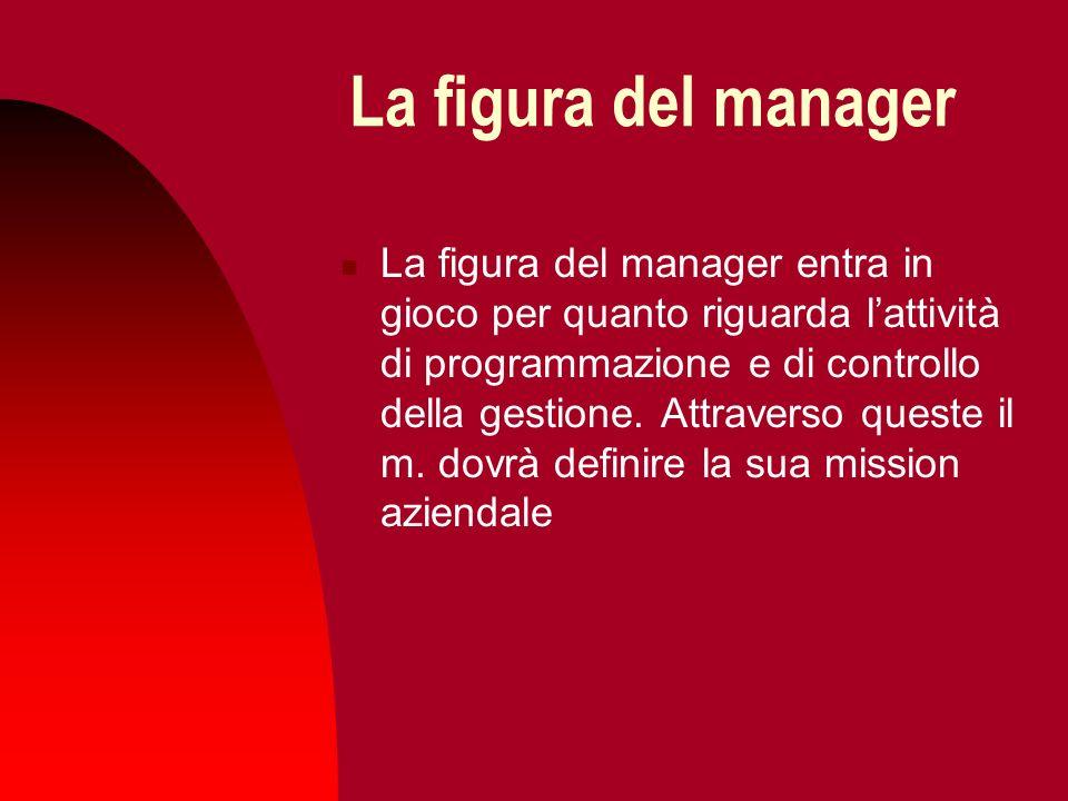 La figura del manager La figura del manager entra in gioco per quanto riguarda lattività di programmazione e di controllo della gestione. Attraverso q