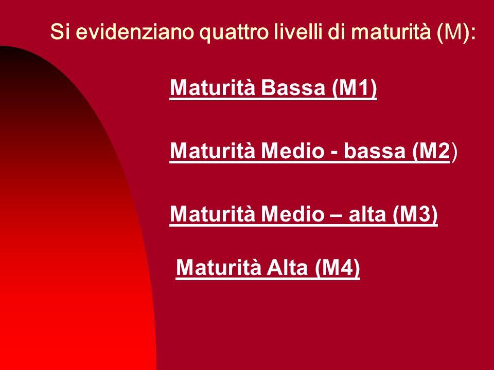 Si evidenziano quattro livelli di maturità (M): Maturità Bassa (M1) Maturità Medio - bassa (M2) Maturità Medio – alta (M3) Maturità Alta (M4)