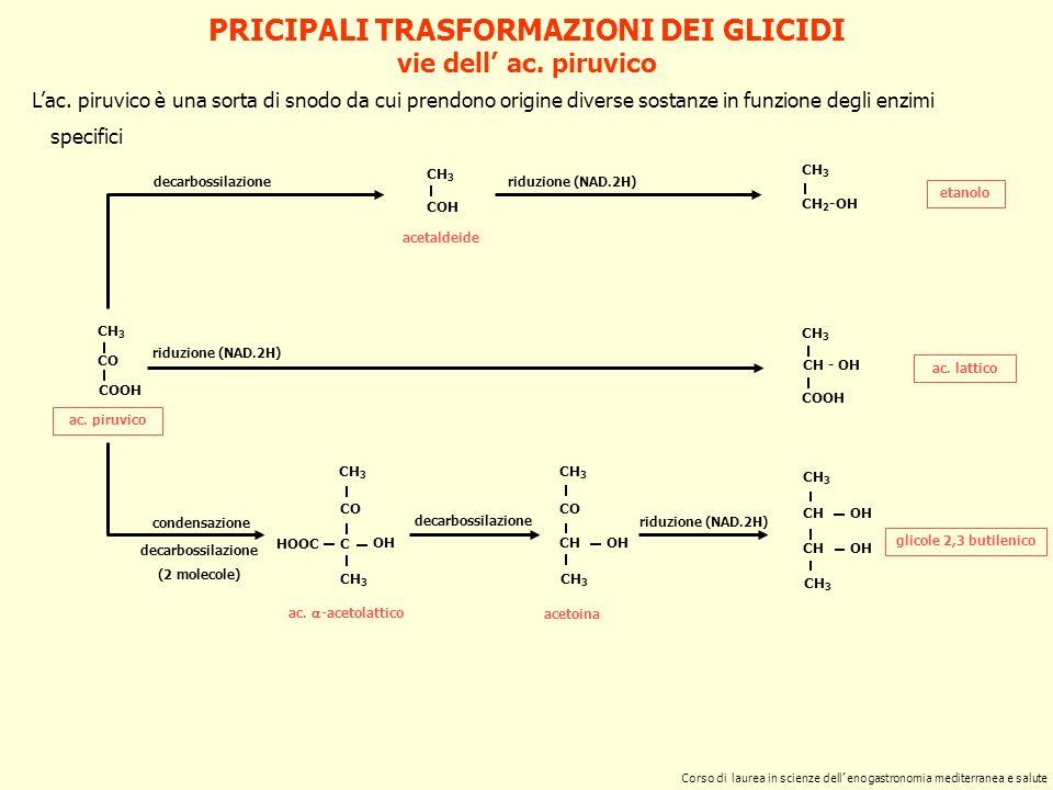 COMPOSIZIONE DI ALCUNI SALUMI A CARNE TRITA 33 MILANOFELINONAPOLI triturazione (mm) bovino % grasso % sale % pepe: g/100 kg 75 3 33 7 - 8 5 - 6 2533 7 - 83 suino % triturazione (mm)16 2,43,54,0 10050300 vino: ml/100 kg 250 Corso di laurea in scienze dell enogastronomia mediterranea e salute ricette di salami italiani tipici
