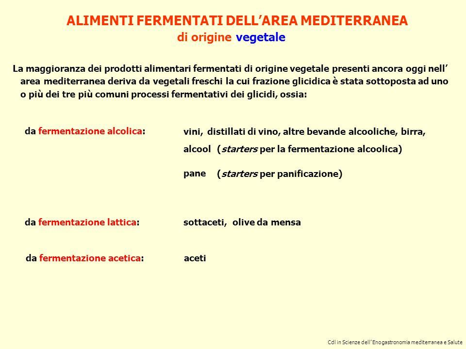 ALIMENTI FERMENTATI DELLAREA MEDITERRANEA di origine vegetale da fermentazione lattica: da fermentazione alcolica: da fermentazione acetica: sottaceti