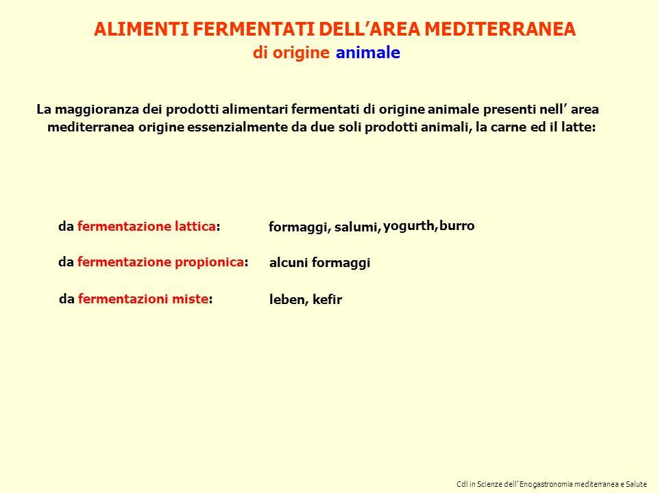 Cdl in Scienze dell Enogastronomia mediterranea e Salute formaggi, ALIMENTI FERMENTATI DELLAREA MEDITERRANEA di origine animale da fermentazione latti