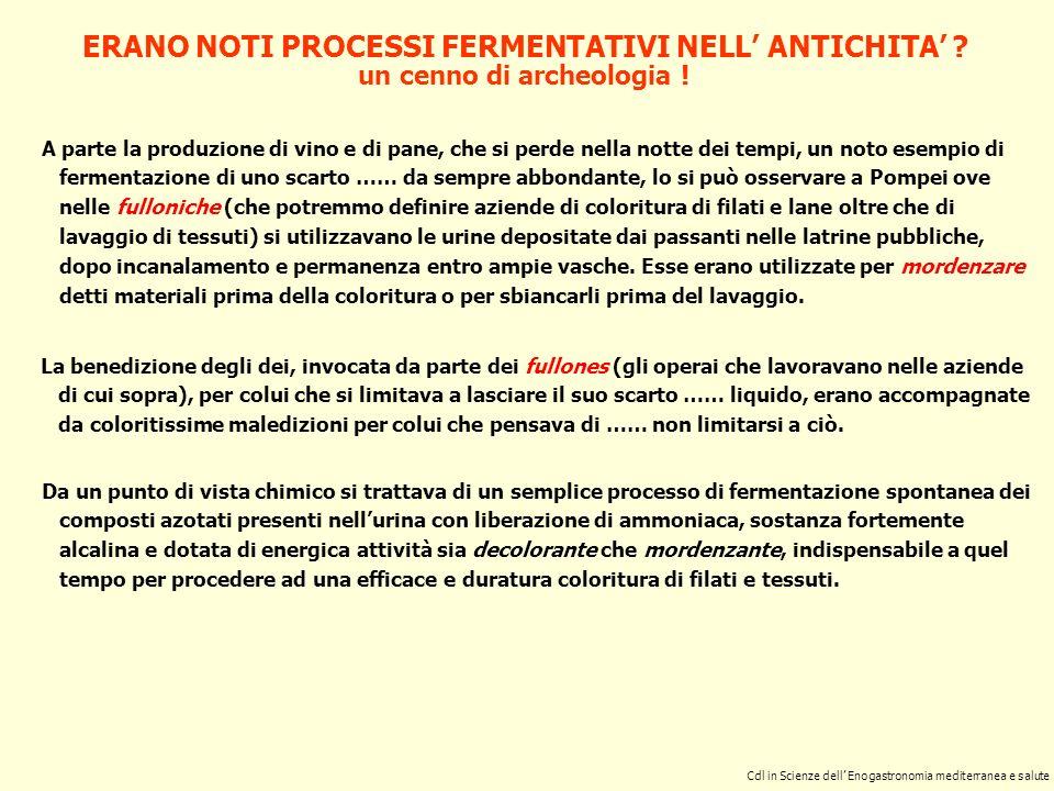 ERANO NOTI PROCESSI FERMENTATIVI NELL ANTICHITA ? A parte la produzione di vino e di pane, che si perde nella notte dei tempi, un noto esempio di ferm