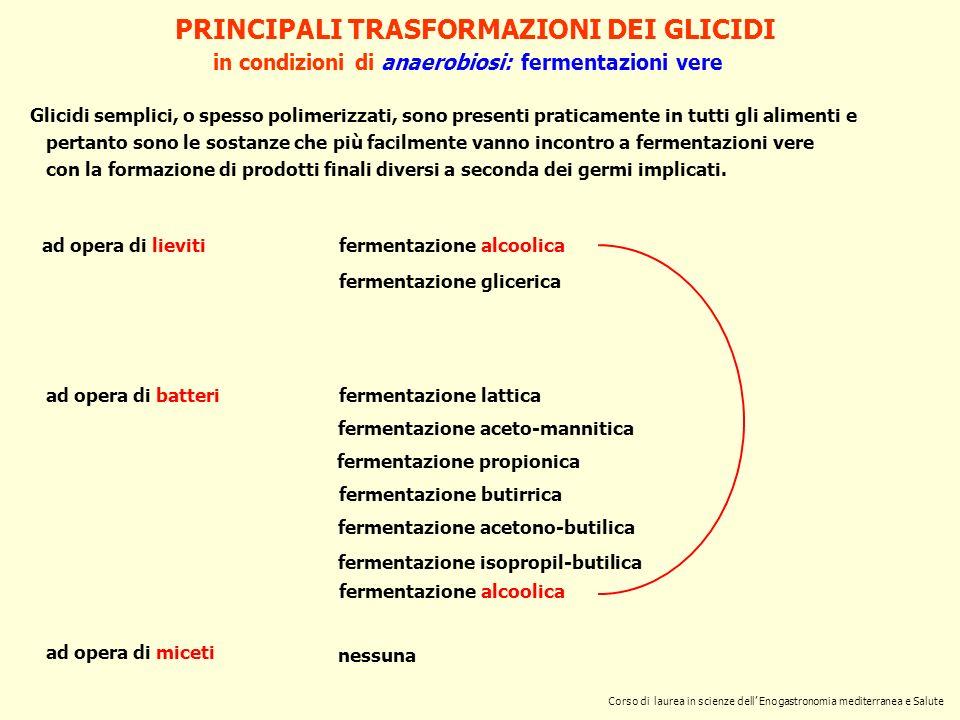 PRINCIPALI TRASFORMAZIONI DEI GLICIDI in condizioni di aerobiosi: ossidazioni (false fermentazioni) ad opera di lieviti fermentazione citrica produzione di biomassa ad opera di batteri ad opera di miceti fermentazione acetica fermentazione acetono-etilica fermentazioni complesse produzione di biomassa fermentazione fumarica fermentazione saccarica fermentazione gluconica fermentazione malica fermentazione mannitica fermentazione citrica fermentazione succinica produzione di biomassa ossidazione completa sino ad CO 2 e H 2 O.