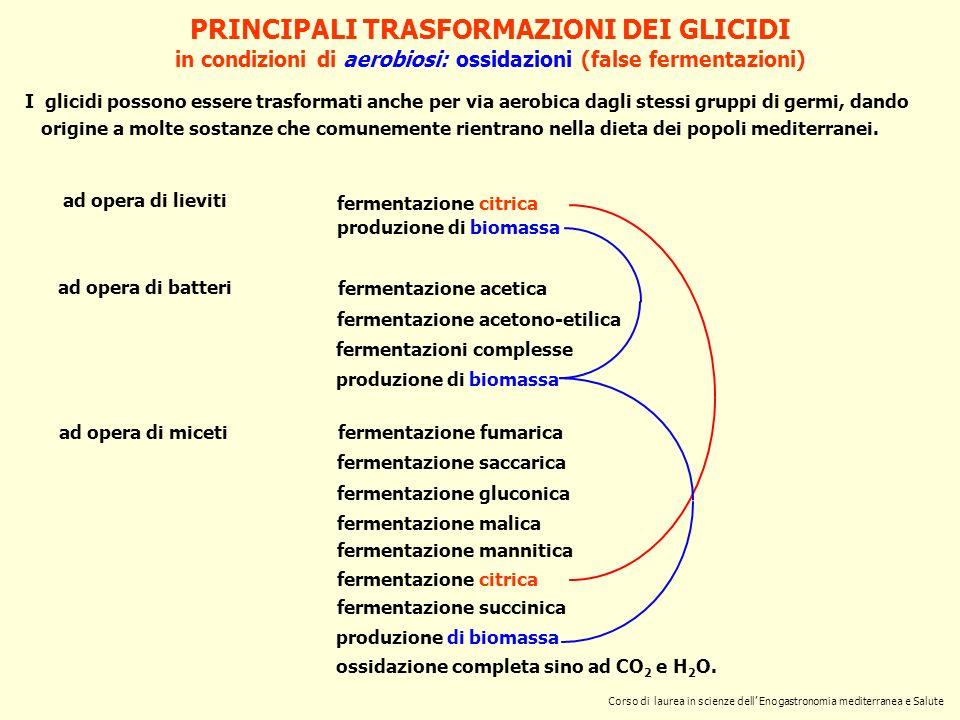 PRINCIPALI TRASFORMAZIONI DEI GLICIDI in condizioni di aerobiosi: ossidazioni (false fermentazioni) ad opera di lieviti fermentazione citrica produzio