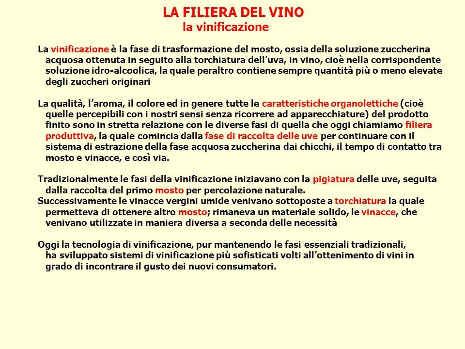 LA FILIERA DEL VINO la vinificazione La vinificazione è la fase di trasformazione del mosto, ossia della soluzione zuccherina acquosa ottenuta in segu
