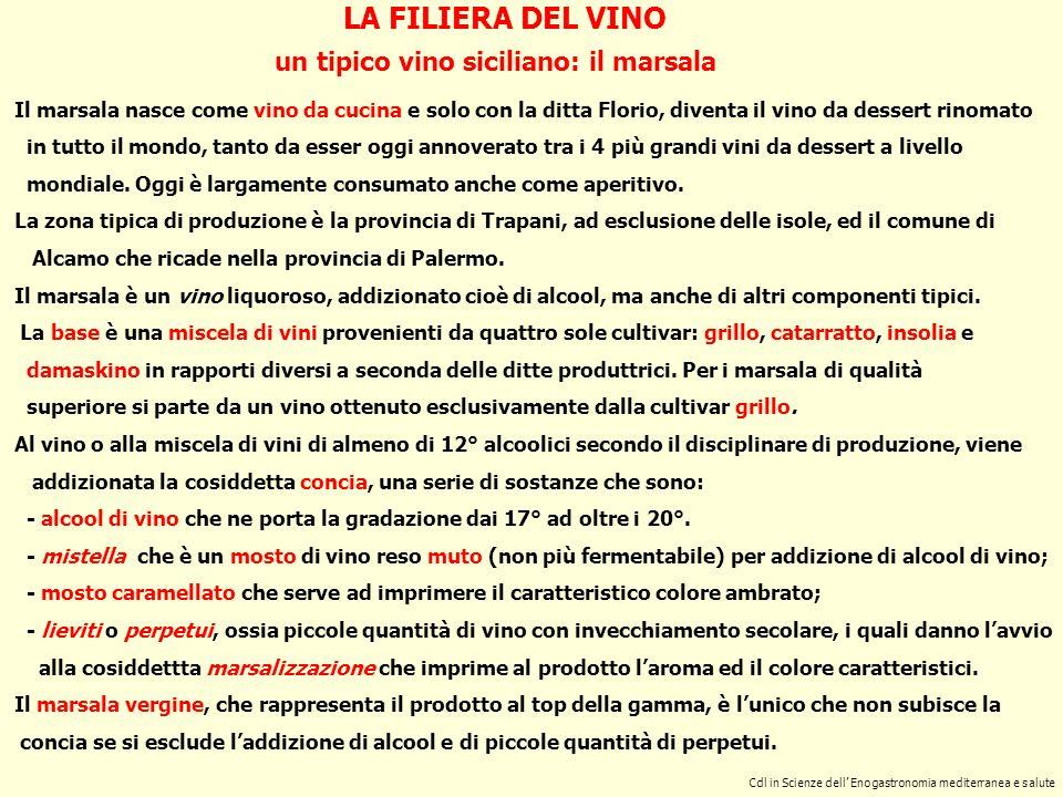 Cdl in Scienze dell Enogastronomia mediterranea e salute LA FILIERA DEL VINO un tipico vino siciliano: il marsala Il marsala nasce come vino da cucina