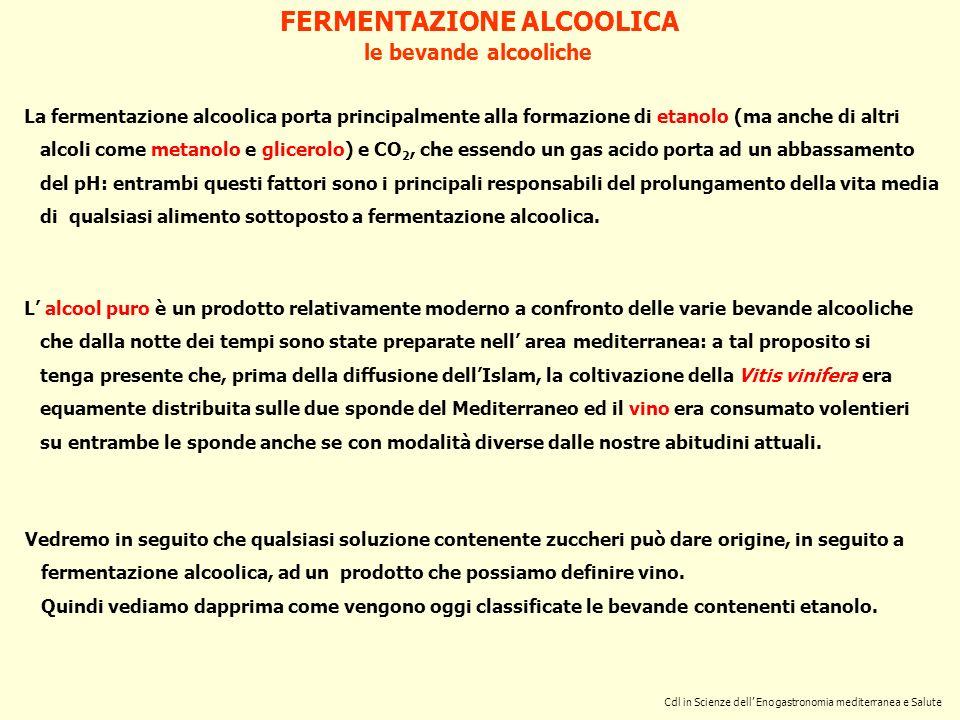 Cdl in Scienze dell Enogastronomia mediterranea e Salute FERMENTAZIONE ALCOOLICA le bevande alcooliche L alcool puro è un prodotto relativamente moder