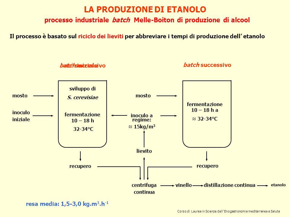 LA PRODUZIONE DI ETANOLO processo industriale batch Melle-Boiton di produzione di alcool Il processo è basato sul riciclo dei lieviti per abbreviare i