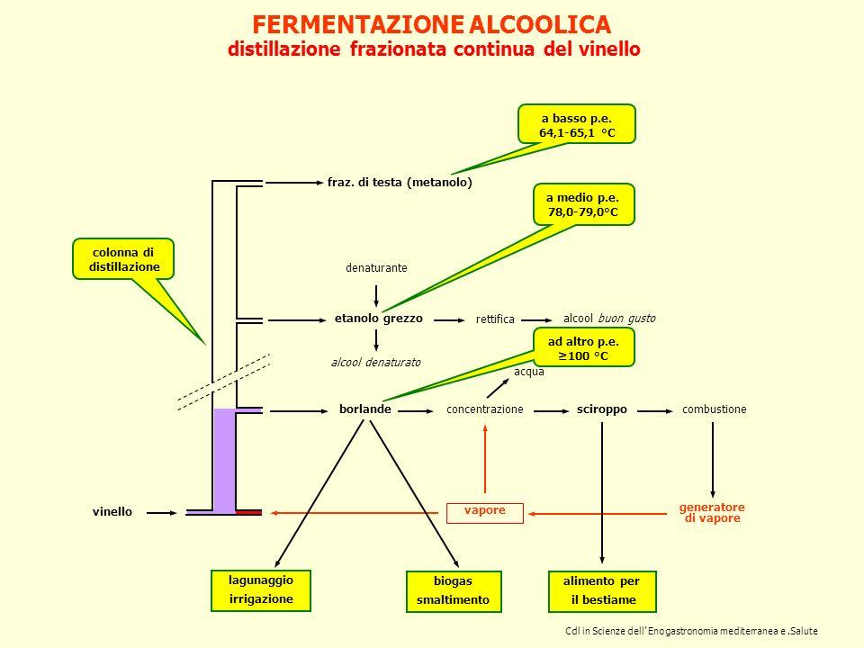 FERMENTAZIONE ALCOOLICA distillazione frazionata continua del vinello vapore borlande etanolo grezzo fraz. di testa (metanolo) concentrazionesciroppoc