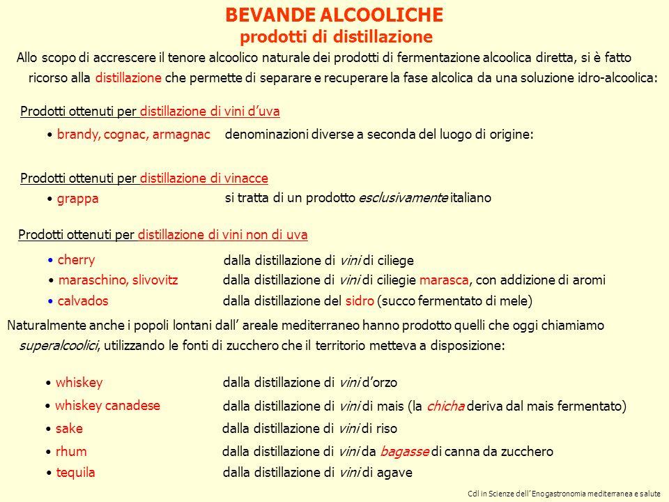 Cdl in Scienze dell Enogastronomia mediterranea e salute Prodotti ottenuti per distillazione di vini duva Prodotti ottenuti per distillazione di vinac