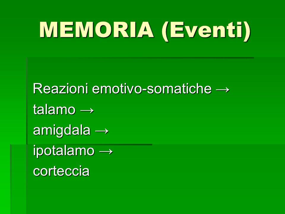 MEMORIA (Eventi) Reazioni emotivo-somatiche Reazioni emotivo-somatiche talamo talamo amigdala amigdala ipotalamo ipotalamo corteccia corteccia