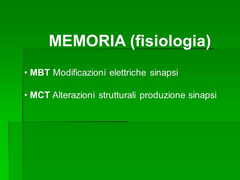 MBT Modificazioni elettriche sinapsi MCT Alterazioni strutturali produzione sinapsi MEMORIA (fisiologia)