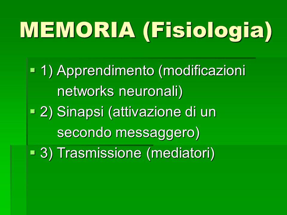 MEMORIA (Fisiologia) 1) Apprendimento (modificazioni 1) Apprendimento (modificazioni networks neuronali) networks neuronali) 2) Sinapsi (attivazione d
