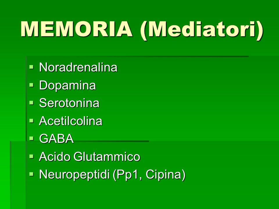 MEMORIA (Mediatori) Noradrenalina Noradrenalina Dopamina Dopamina Serotonina Serotonina Acetilcolina Acetilcolina GABA GABA Acido Glutammico Acido Glu