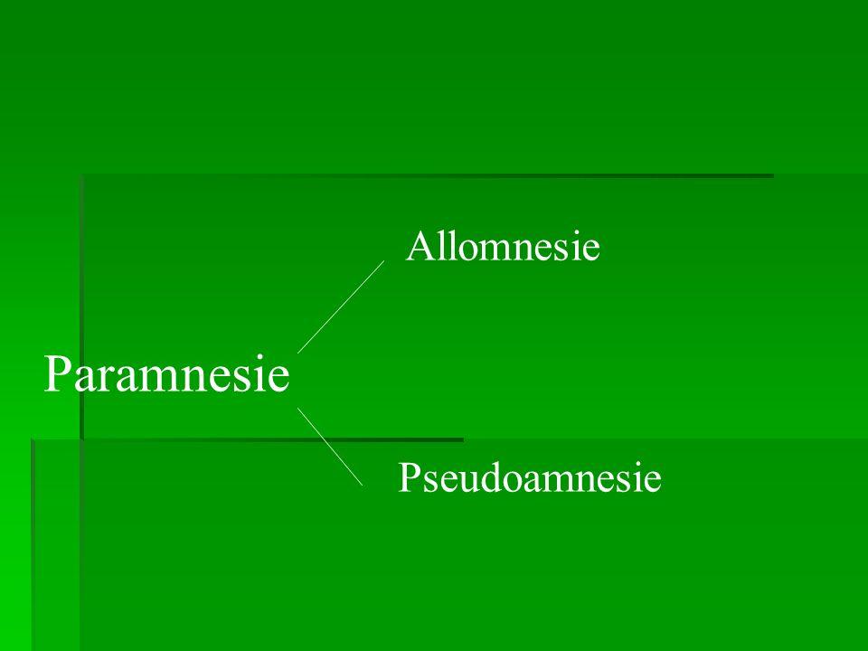 Paramnesie Allomnesie Pseudoamnesie