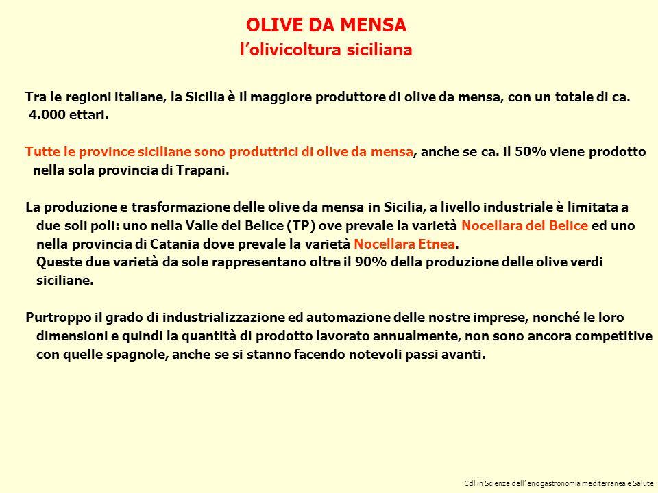 IL PROCESSO FERMENTATIVO DELLE OLIVE DA MENSA - 2 Cdl in Scienze dell Enogastronomia mediterranea e Salute 2^ fase o di fermentazione primaria Dura ca.