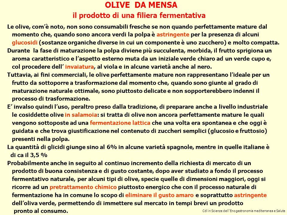 Cdl in Scienze dell enogastronomia mediterranea e salute OLIVE DA MENSA caratteristiche principali del frutto Per poter essere sottoposte a trasformazione, le olive debbono possedere alcuni requisiti.