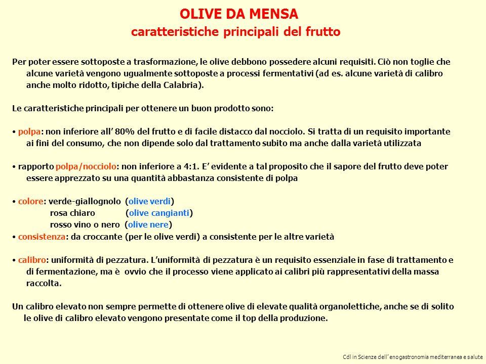 LA FERMENTAZIONE CLASSICA DELLE OLIVE VERDI olive verdi calibrate salamoia (pastorizzata) fusti in politene NaCl: iniziale 6-7 % finale ca.