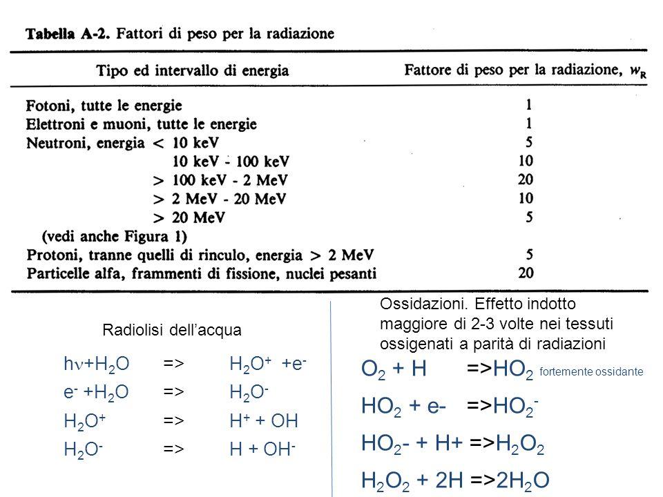 h +H 2 O=>H 2 O + +e - e - +H 2 O=>H 2 O - H 2 O + =>H + + OH H 2 O - =>H + OH - O 2 + H =>HO 2 fortemente ossidante HO 2 + e- =>HO 2 - HO 2 - + H+ =>H 2 O 2 H 2 O 2 + 2H =>2H 2 O Radiolisi dellacqua Ossidazioni.