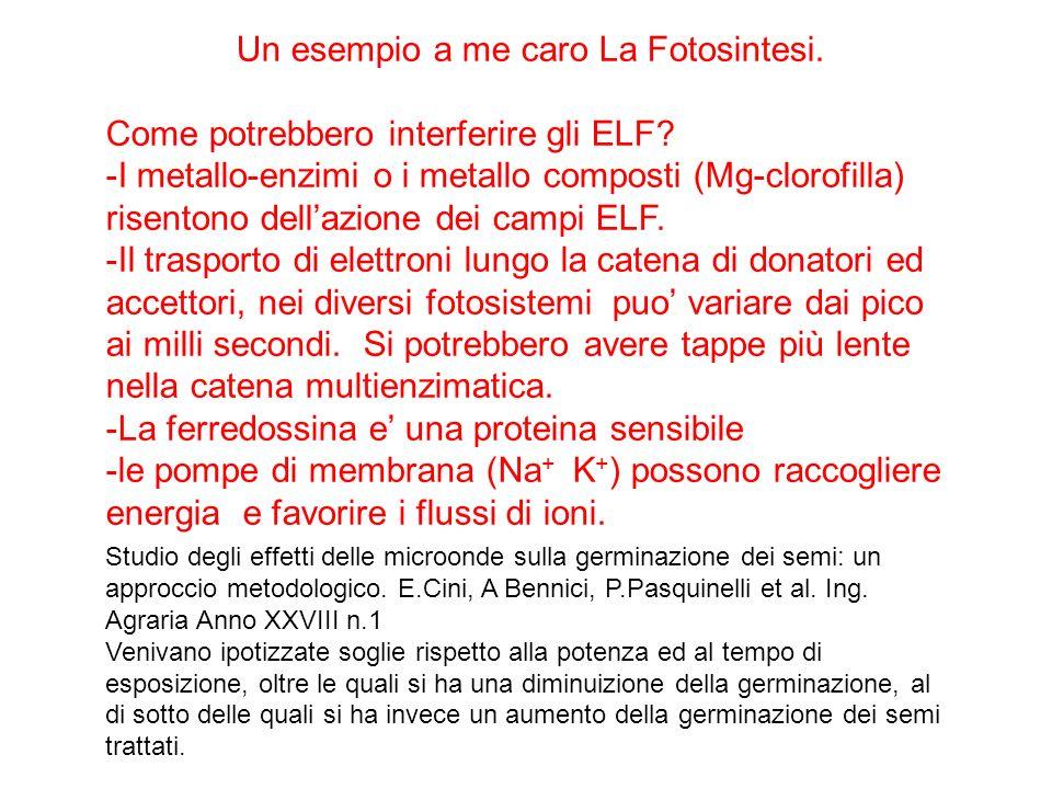 Un esempio a me caro La Fotosintesi. Come potrebbero interferire gli ELF.