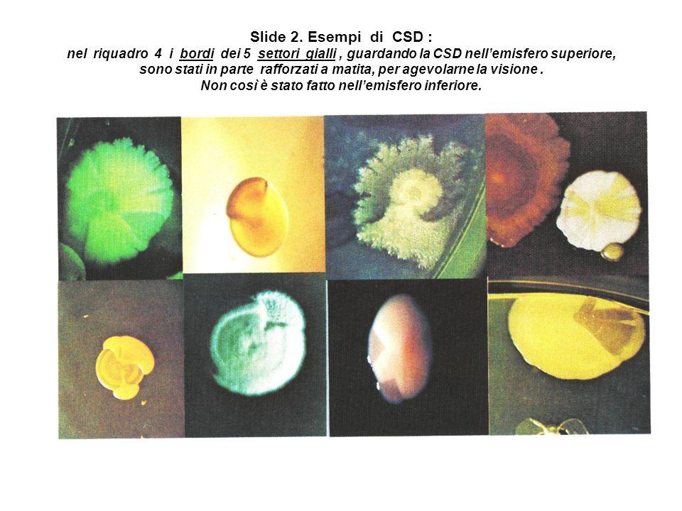 Slide 2. Esempi di CSD : nel riquadro 4 i bordi dei 5 settori gialli, guardando la CSD nellemisfero superiore, sono stati in parte rafforzati a matita