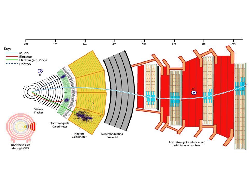 CMS - Torino ¼ spettrometro centrale per muoni (Drift Tubes) parte dellelettronica di lettura di ECAL Enorme contributo: hardware (costruzione e commissioning) software e analisi Nei laboratori di Torino assemblaggio e test di importanti parti di CMS: Tracker Inner Disks ×18