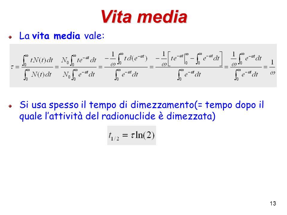13 Vita media La vita media vale: Si usa spesso il tempo di dimezzamento(= tempo dopo il quale lattività del radionuclide è dimezzata)
