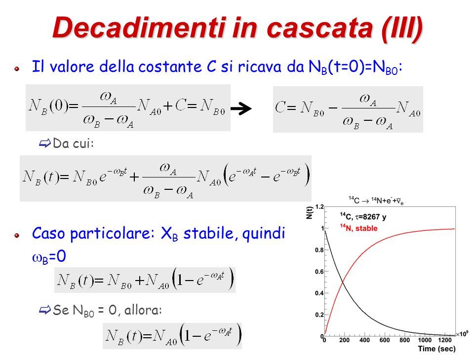 18 Decadimenti in cascata (III) Il valore della costante C si ricava da N B (t=0)=N B0 : Da cui: Caso particolare: X B stabile, quindi B =0 Se N B0 =