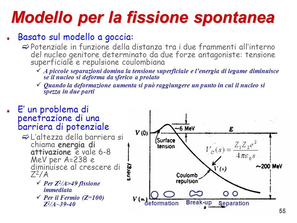 Break-up Separation deformation Modello per la fissione spontanea E un problema di penetrazione di una barriera di potenziale Laltezza della barriera