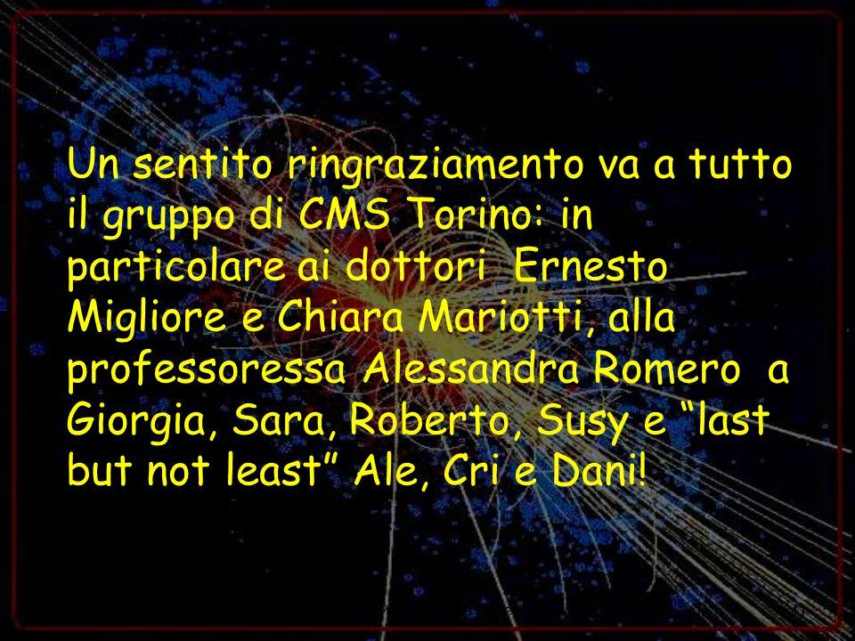 24/09/07M. Musich - Presentazione Laurea Magistrale41 Un sentito ringraziamento va a tutto il gruppo di CMS Torino: in particolare ai dottori Ernesto