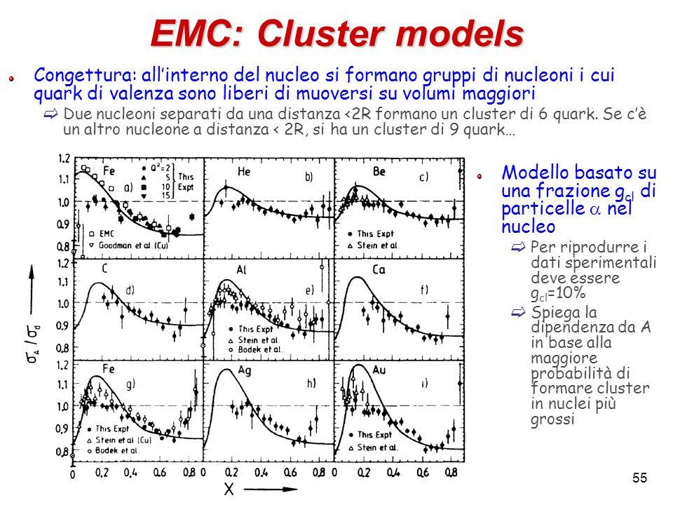 EMC: Cluster models Congettura: allinterno del nucleo si formano gruppi di nucleoni i cui quark di valenza sono liberi di muoversi su volumi maggiori
