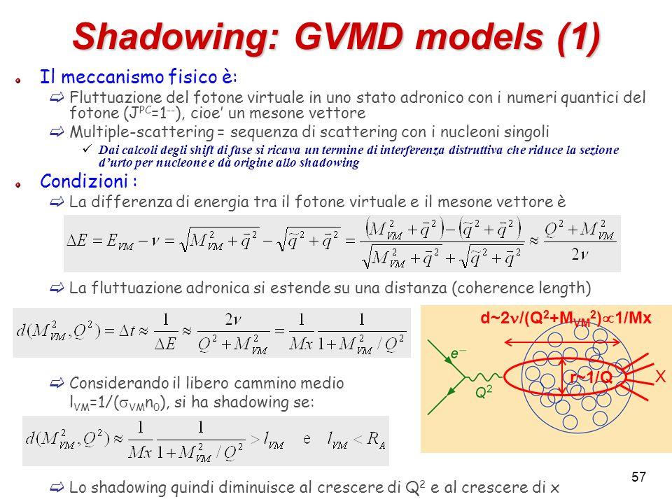 Shadowing: GVMD models (1) Il meccanismo fisico è: Fluttuazione del fotone virtuale in uno stato adronico con i numeri quantici del fotone (J PC =1 --