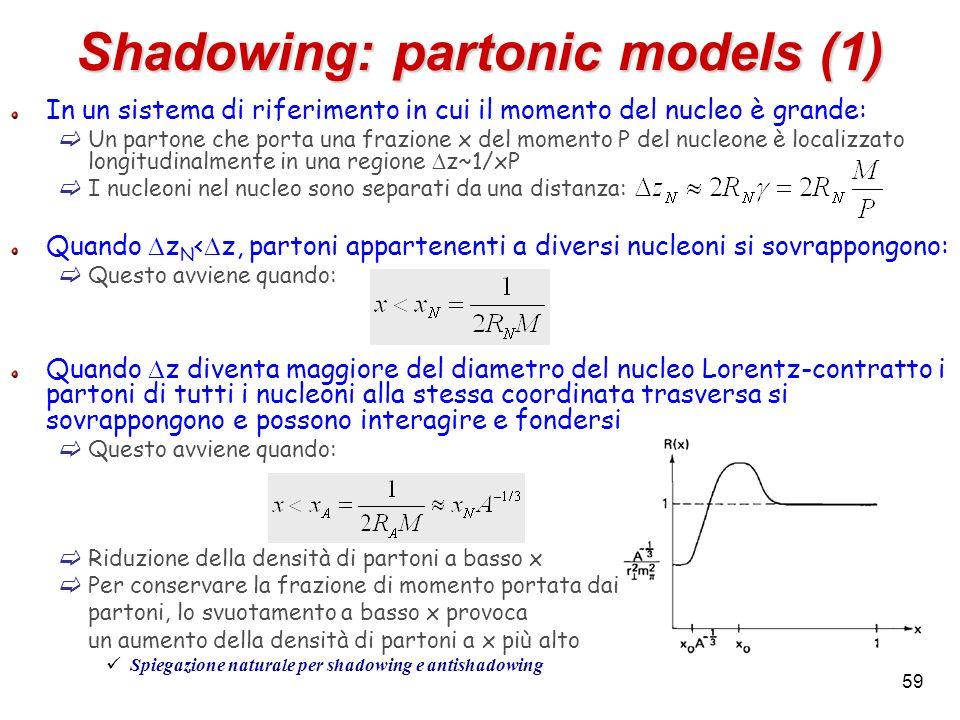 Shadowing: partonic models (1) In un sistema di riferimento in cui il momento del nucleo è grande: Un partone che porta una frazione x del momento P d