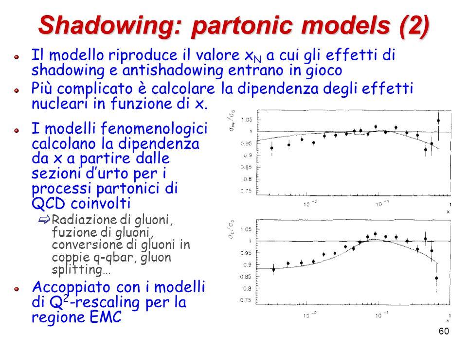 Shadowing: partonic models (2) Il modello riproduce il valore x N a cui gli effetti di shadowing e antishadowing entrano in gioco Più complicato è cal