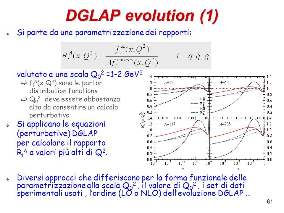 DGLAP evolution (1) Si parte da una parametrizzazione dei rapporti: valutato a una scala Q 0 2 =1-2 GeV 2 f i A (x,Q 2 ) sono le parton distribution f