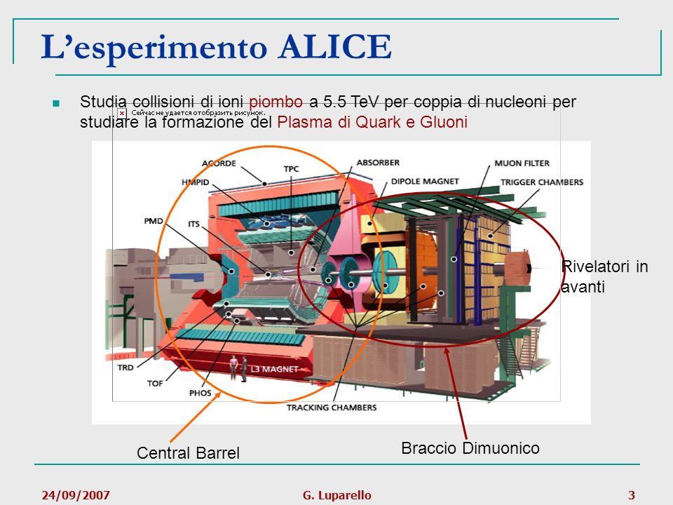 24/09/2007G. Luparello3 Lesperimento ALICE Central Barrel Braccio Dimuonico Rivelatori in avanti Studia collisioni di ioni piombo a 5.5 TeV per coppia