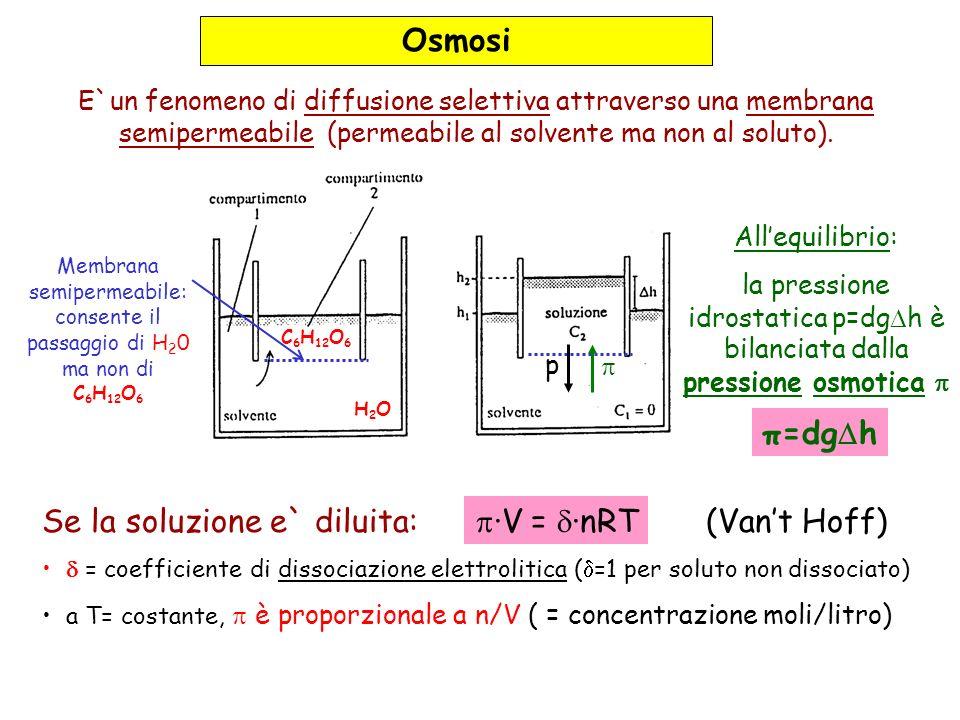 Osmosi E`un fenomeno di diffusione selettiva attraverso una membrana semipermeabile (permeabile al solvente ma non al soluto).
