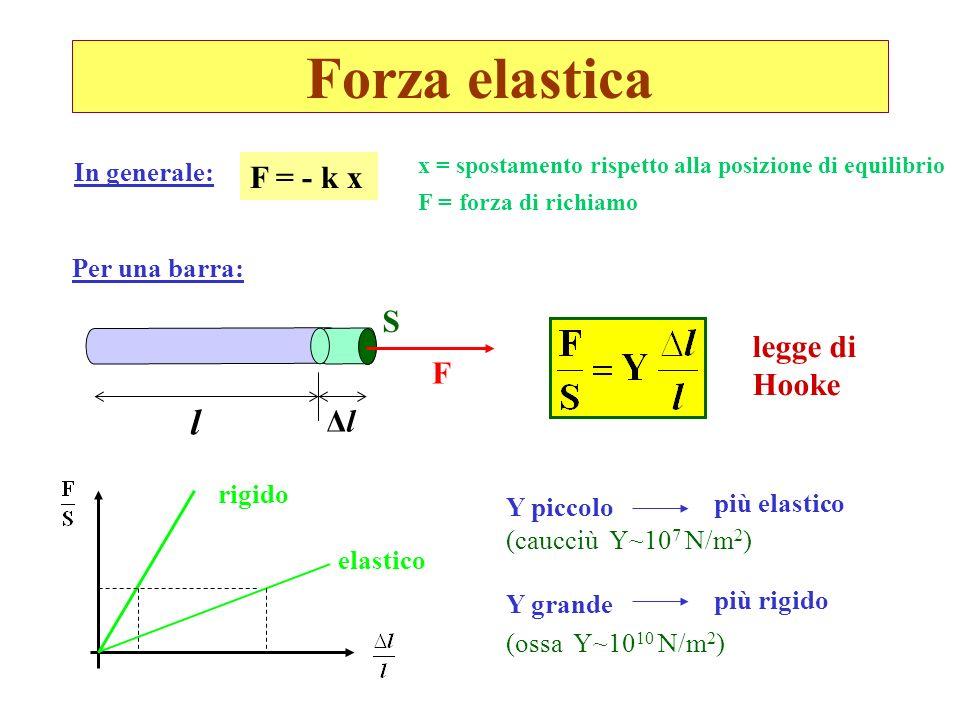 Forza elastica S l ΔlΔl F F = - k x x = spostamento rispetto alla posizione di equilibrio F = forza di richiamo legge di Hooke rigido elastico Y picco